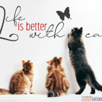Wandtattoo-Spruch-Meme-zu-Katzen-Life-is-better-with-cats